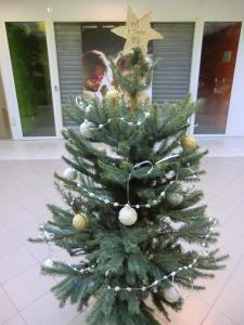 Vánoční ozdoby z papíru a vody (8)