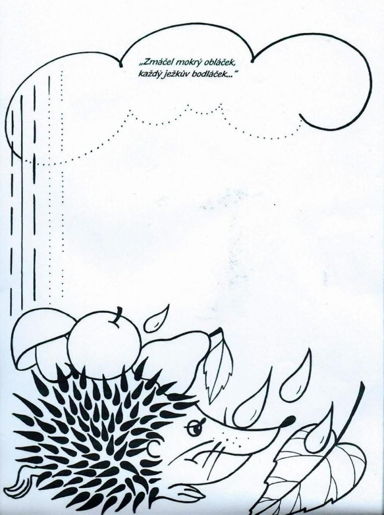 ježek a déšt-svislé čáry