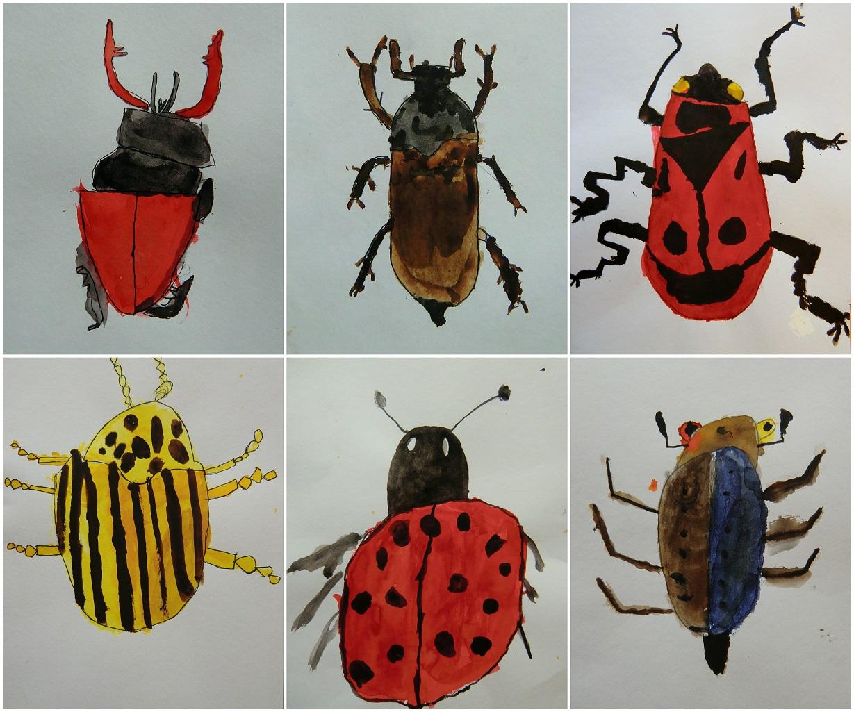 Hmyz Vytvarna Vychova